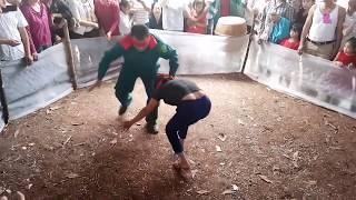 Trò chơi bịt mắt bắt lợn trong Lễ hội Làng em