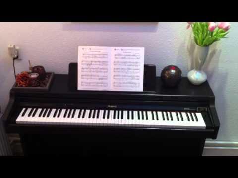 Roland Piano Digitale Roland Digitale Piano Hp147re