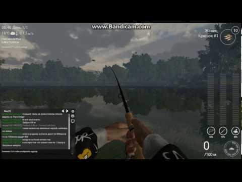 fishing planet озеро рокки форель на поплавочную удочку