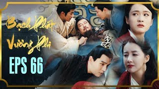 BẠCH PHÁT VƯƠNG PHI - TẬP 66 (Tập Cuối) [FULL HD] | Phim Cổ Trang Hay Nhất | Phim Mới 2019