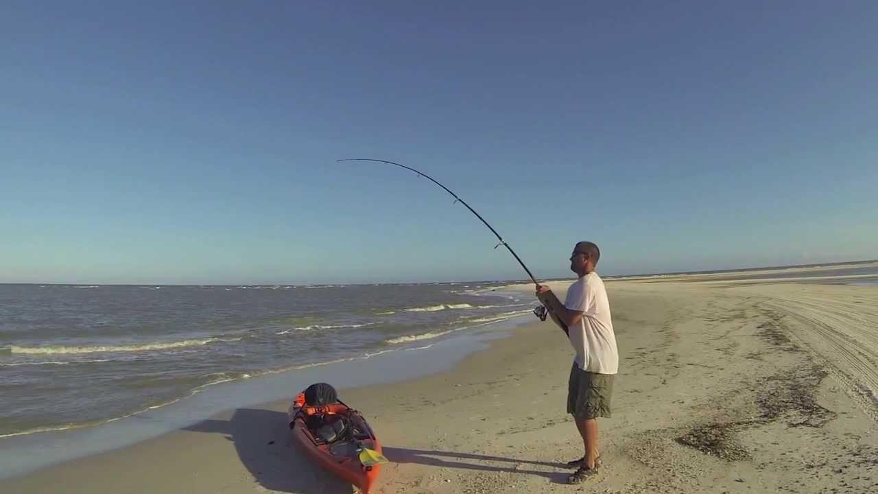 Shark fishing on cape san blas gulf county florida youtube for Shark fishing from shore