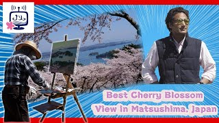 Best Cherry Blossom View in Matsushima, Japan أفضل مكان لرؤية الساكورا في اليابان، ماتسوشيما