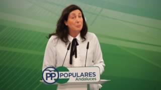 PP LOPEZ PRESUPUESTOS OK 2017 02 13