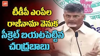 CM Chandrababu Reveals The Secret Behind TDP MP's Resignations | AP Special Staus