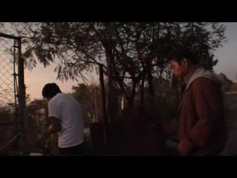 Devendra Banhart- Santa Maria De Feira