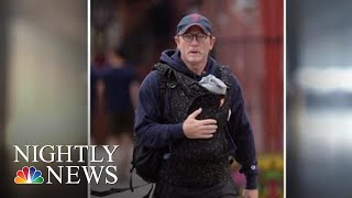 Daniel Craig Shamed On Social Media For Wearing A Baby Carrier | NBC Nightly News