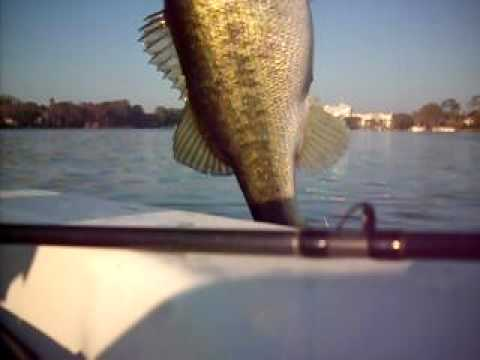 Trophy Bass Fishing in Orlando Fl with Skeeter Pro Jeffrey Worth