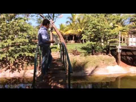 Vida Sustentável - Parte 1 - Novo Campo - 03/08/14