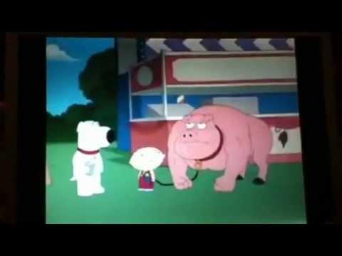 stewie steroids pig