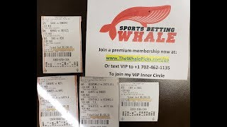 I Bet Another 30,000 Today on Sports! My MLB Baseball Picks & Betting Tickets - The Whale 6/22/18
