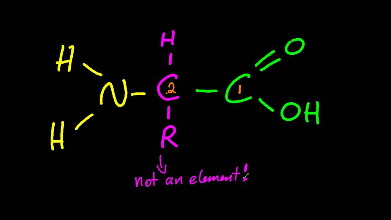 Amino Structural Formula Formula of 2-amino Acids