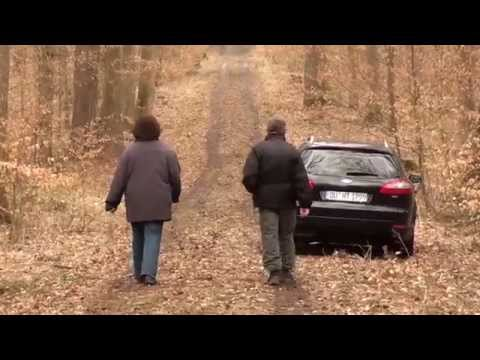 SONY HDR-CX150 - Full HD Test 04 - Forest