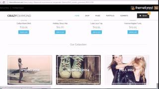 Crazy Diamond - Ecommerce & Corporate Theme download free