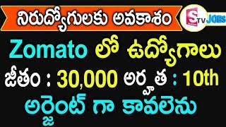 Jobs In Andhra Pradesh | Latest Private Zomato Jobs In Vizag And Vijayawada | Hyderabad Jobs