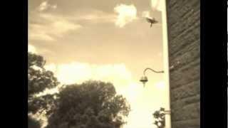 Watch Joel Plaskett Absentminded Melody video