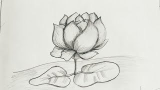 How to draw Realistic Lotus