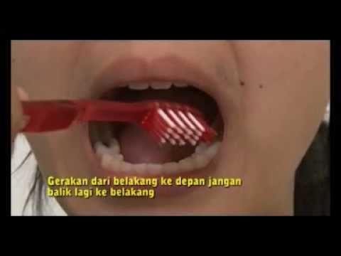 Cara Sikat Gigi Yang Benar Sikat Gigi Yang Benar by