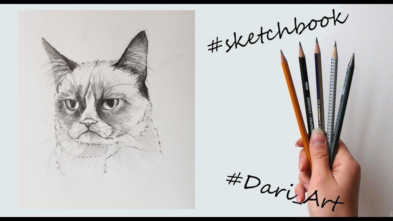 Дари арт рисуем карандашом