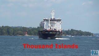 Thousand Islands- Ore Nil Dorya