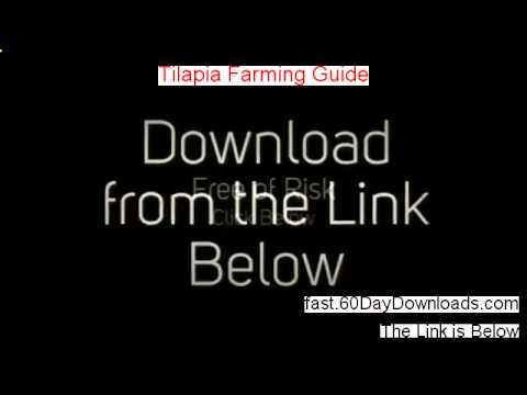 Tilapia Farming Guide 2.0 Review, Does It Work  And Download Link