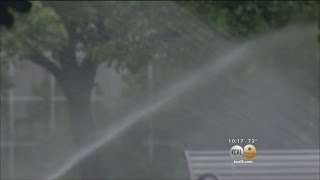 The 'Wet' Prince Of Bel Air: 1 Home Uses 12 Million Gallons Of Water Per Year