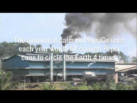 RAN Fast Facts: Pepsi & Palm Oil