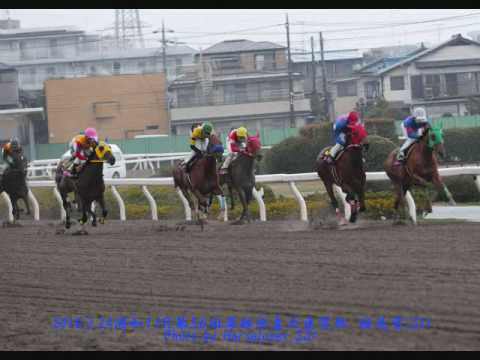 農林大臣水産省第56回桜花賞(SI) - the 56th Runnings of the Ohkasho Gr.I
