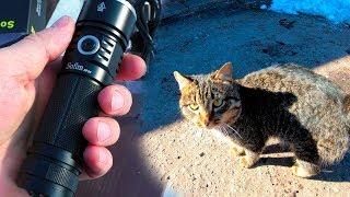 Про кота Серёжу и фонарь. Жизнь в деревне.