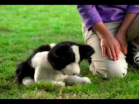 furreal friends playful pup commercial youtube