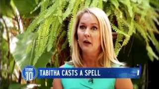 Tabitha From