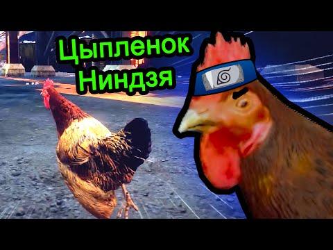Цыпленок ниндзя (Клип)