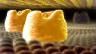 (0.56 MB) Penicillin Binding Protein Animation Mp3