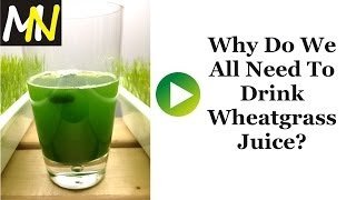 Why Do We All Need To Drink Wheatgrass Juice Daily?