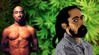 2pac Ft Damian Marley Road To Zion Remix