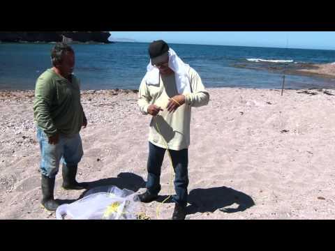 Don Arturo Wemma explicando como se tira una atarraya