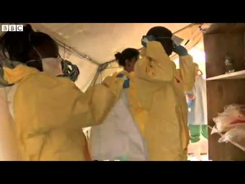 BBC News  Africa's Ebola outbreak 'out of control', warns MSF