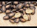 Исключительная польза арбузных семечек Чай из арбузных семян Возьми 4 ст л свежих растолченных mp3