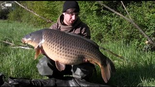Carpfishing, a few weeks of summer 2014