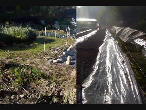 Hortas da Aldeia - Produ��o Biol�gica Lda (Dez2008)
