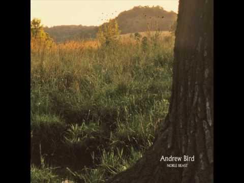 Andrew Bird - Fitz And The Dizzyspells