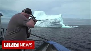 Hunting for 'the world's purest water' - BBC News