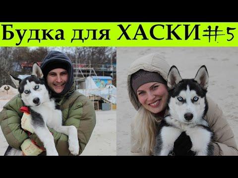 Будка для сибирской хаски / Dog house Husky 5-я часть