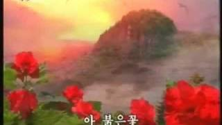 남해가의 붉은꽃 Red flowers on the South sea