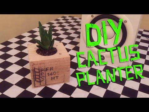 DIY: POT FROM PALLET BLOCK - Cactus Planter  Edited with Splice Apps on iPhone