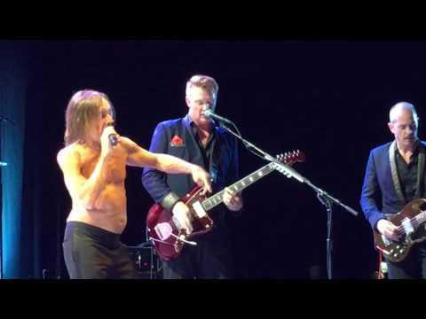 Iggy Pop - Tonight (HMH-Amsterdam, May 10th, 2016)