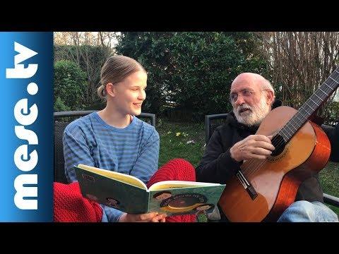 Gryllus Vilmos: Dal a kézmosásról (A Dalok reggeltől estig c. CD-s könyvből) | MESE TV