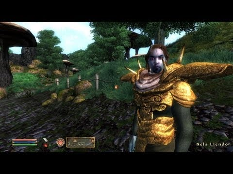 Morrowind Remake 2014 - Morroblivion Review