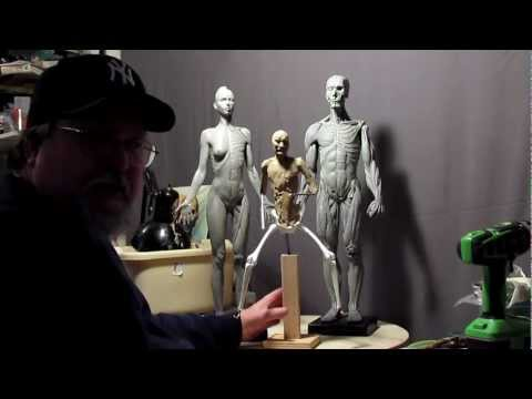 Sculpting Tutorial - Anatomical Correct Female And Male Reference Figures video