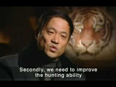 Siberian Tigers - China