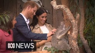 Prince Harry and Meghan Markle receive first baby gift | ABC News